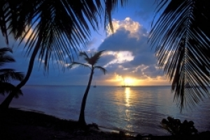 Belize Reef and Rainforest Tours