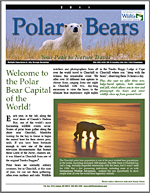 Polar_bear_brochure_thumb