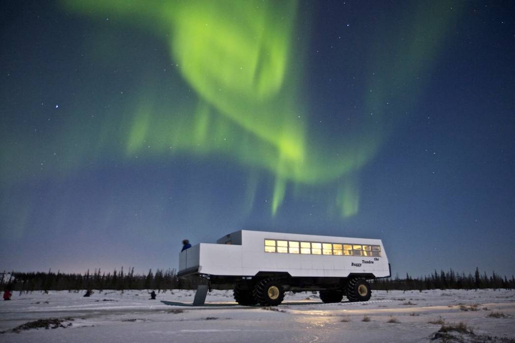 Tundra Buggy Northern Lights - Frontiers North-1